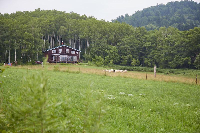 Farm Inn Tonto