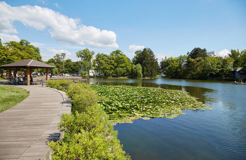 Murakami Asahikawa Park