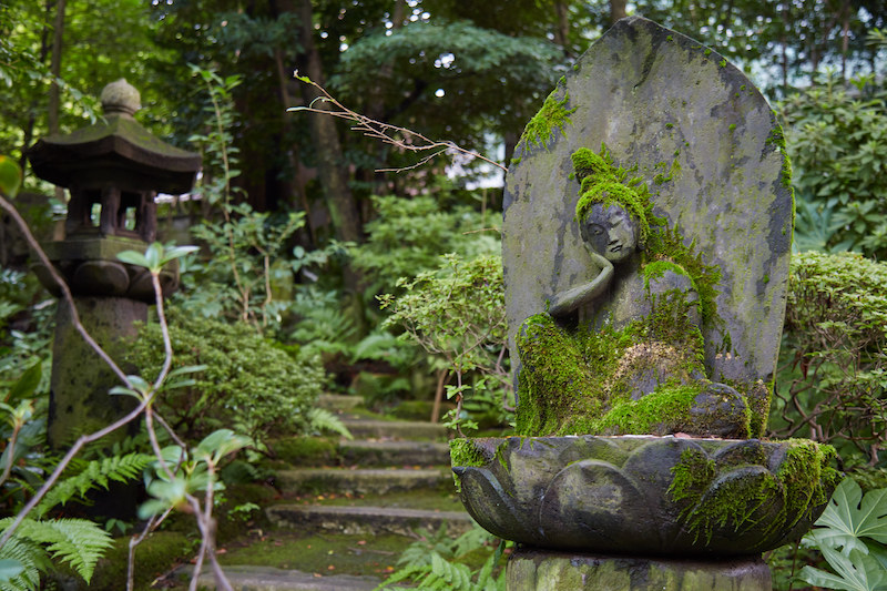 Nezu Museum Haruki Murakami